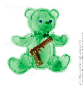 teddy bear gun